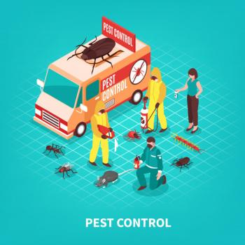 Pest Control with 3 months guarantee - Muaither/Ra