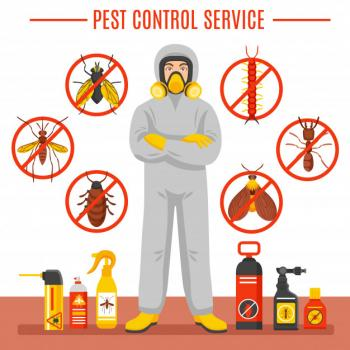 Pest Control Any Location in Qatar - 74464457