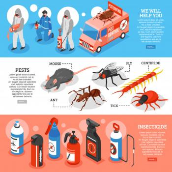 All Kinds of Insects control - Any where in Qatar
