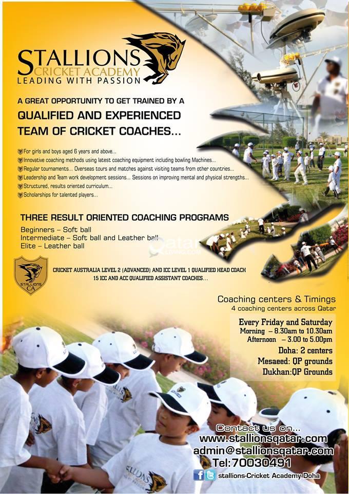 Stallions Cricket Academy for kids | Qatar Living