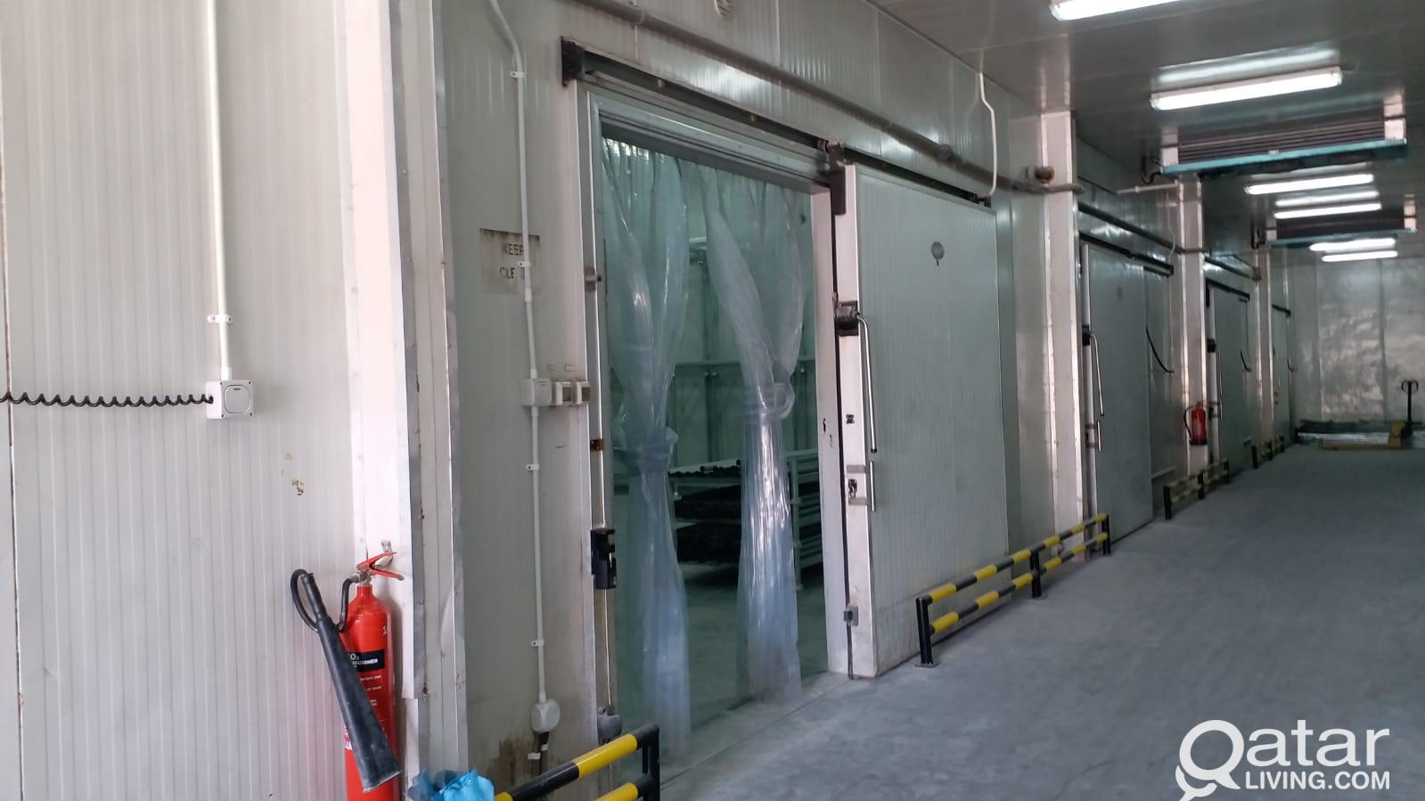 60 SQM, Cold Stores for rent (-18, +5 & +20 degree