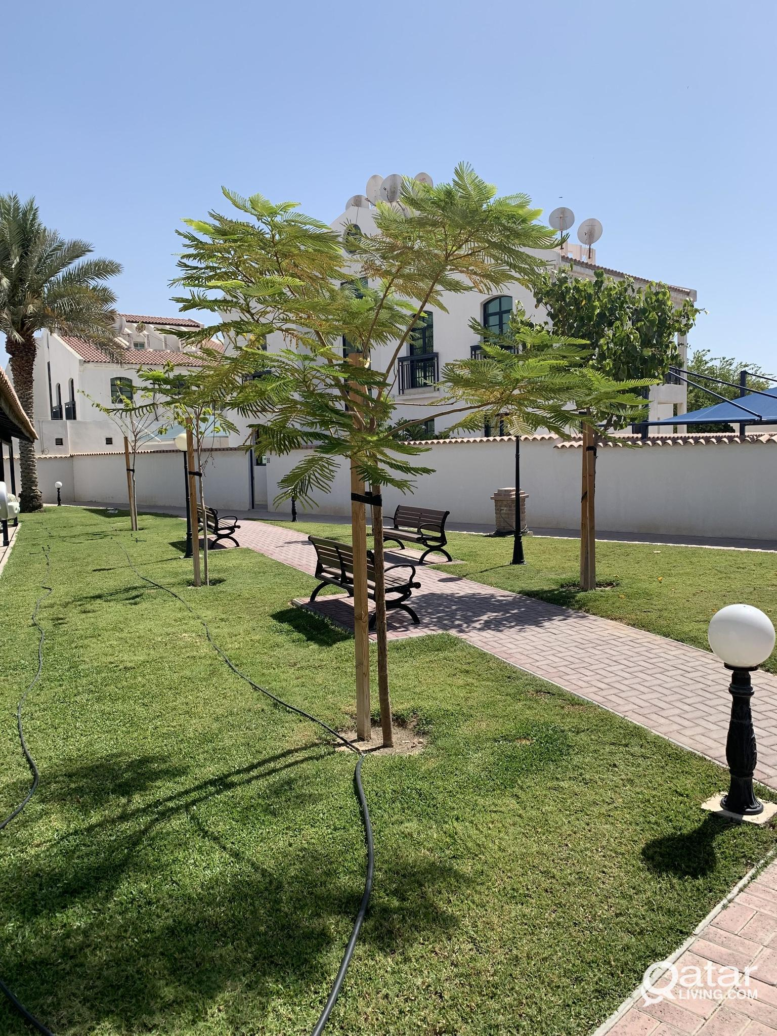 APARTMENT FOR RENT - PEARL GARDEN COMPOUND