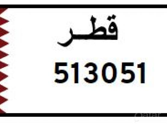 Special Car Number Plate   (51 30 51)