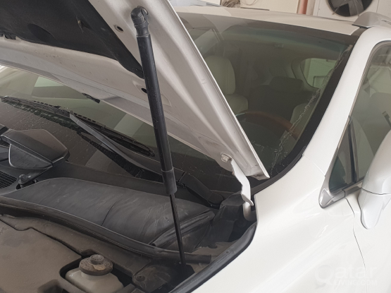 Hood support for Lexus RX 350 2010