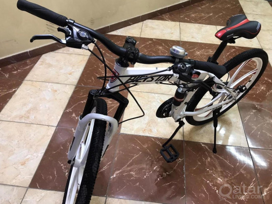 Foldable Bicycle with Double Suspension