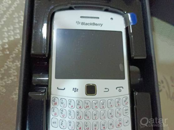 Blackberry curve & torch