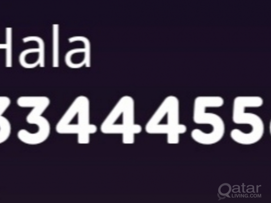 33444556