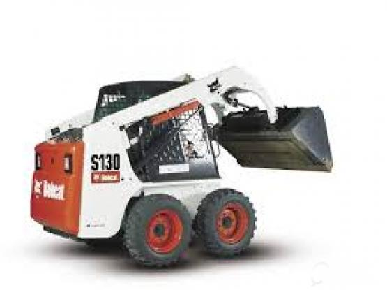 bobcat available for rent